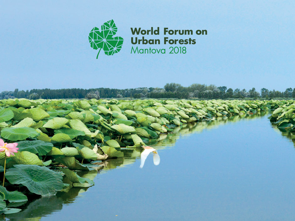 World Forum On Urban Forests 2018